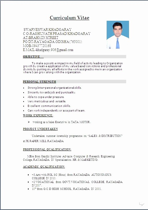 Curriculum Vitae Download In Ms Word