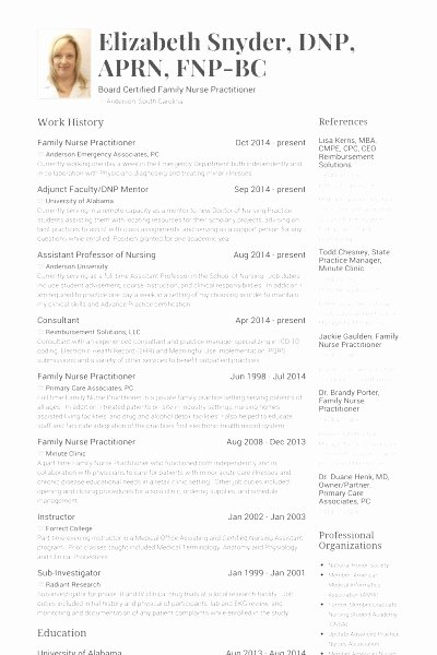 Curriculum Vitae Examples for Nurse Practitioners