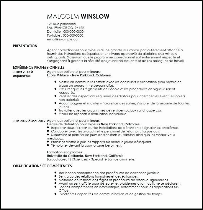 Curriculum Vitae Pour Agent Correctionnel Surveillance