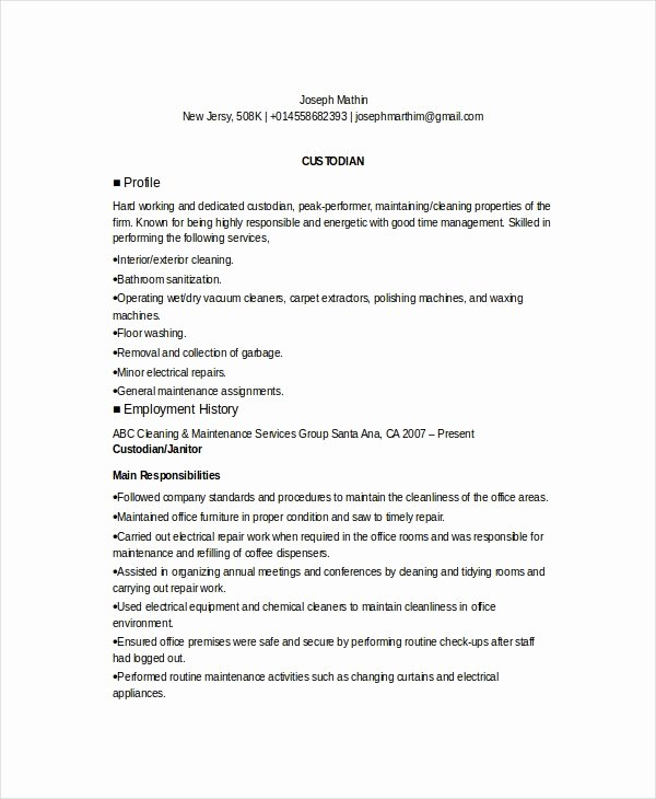 Custodian Resume Examples