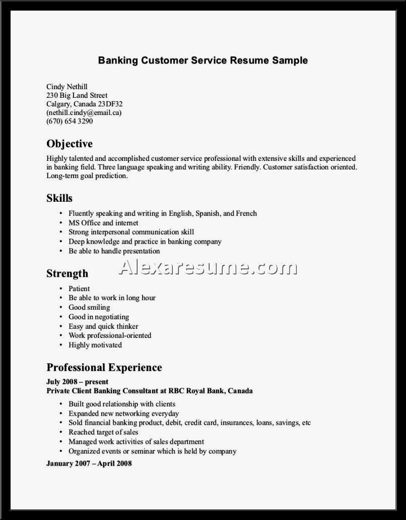 Customer Service Resume Skills Examples