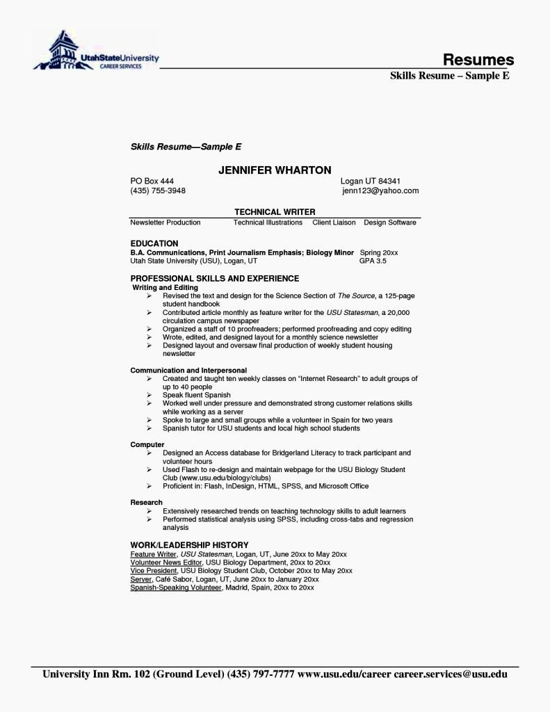 Customer Services Skills Resume Resume Template
