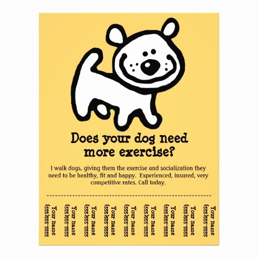 Cute Dog Walking Promotion Tear Sheet Flyer Y Flyers