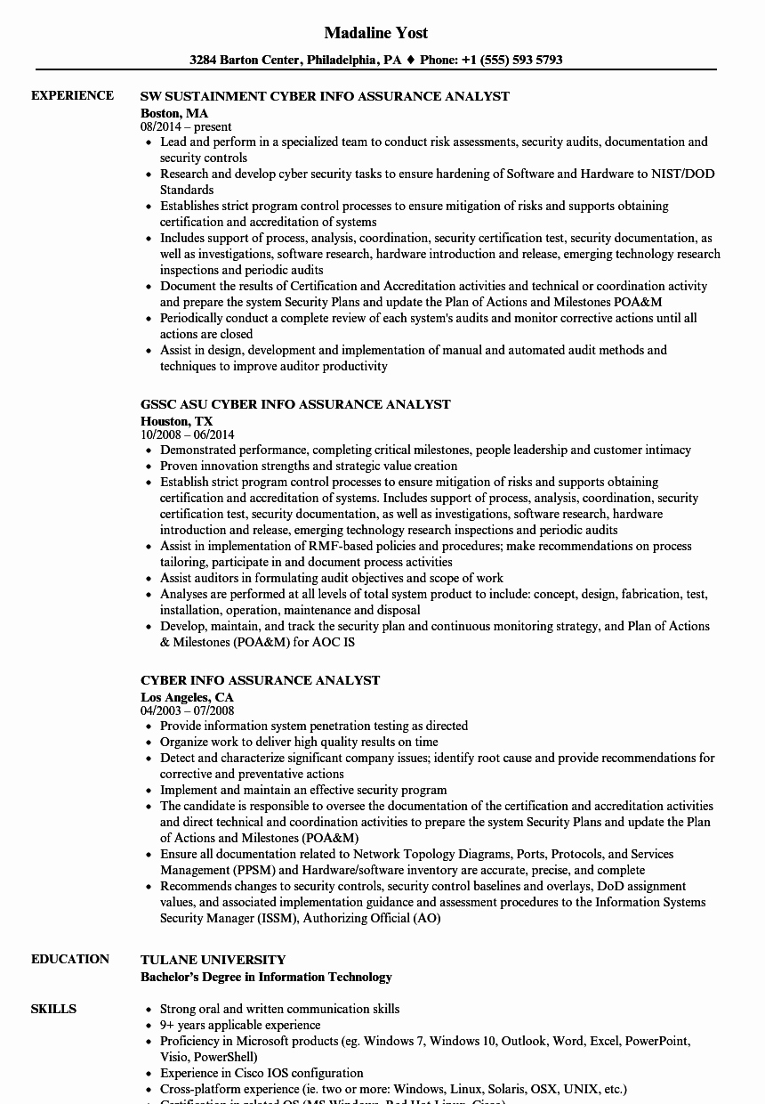 Cyber Info assurance Analyst Resume Samples