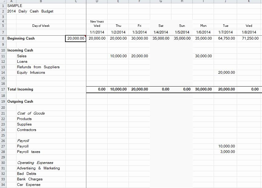 Daily Cash Flow Spreadsheet – organized Bookkeeping
