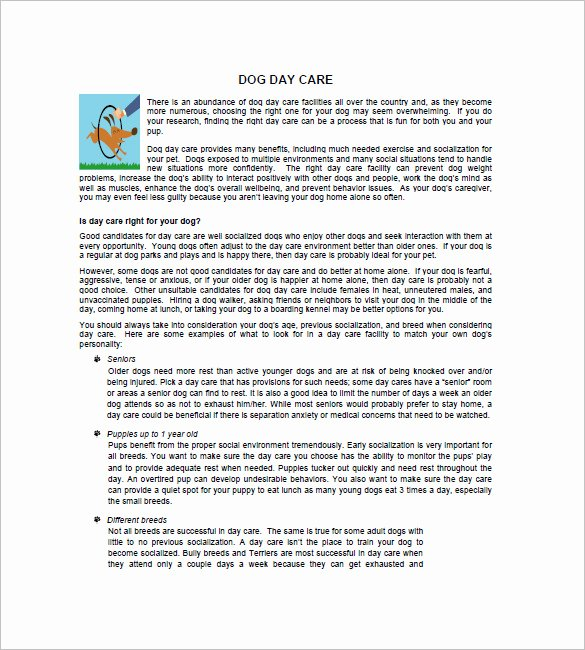 Daycare Business Plan Template 12 Free Word Excel Pdf
