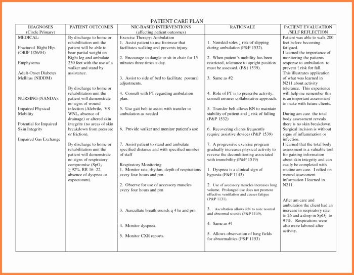 Dementia Care Plan Template Uk Templates Resume