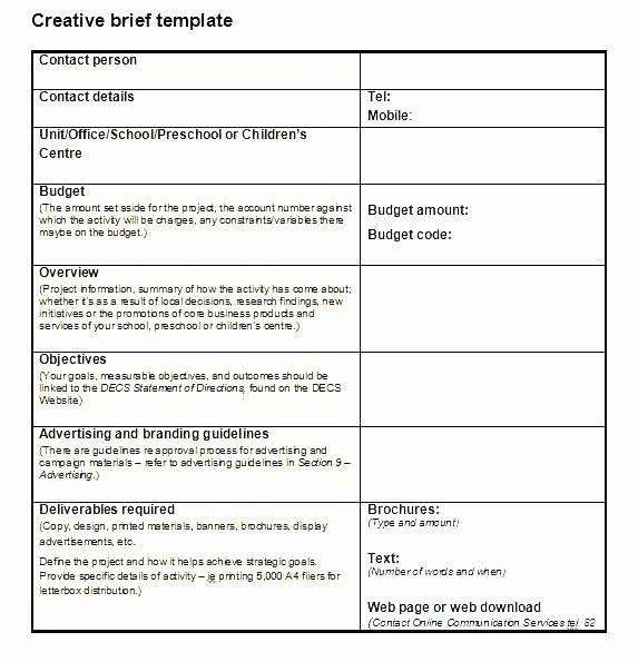 Digital Marketing Campaign Brief Template U2013 Thalmus