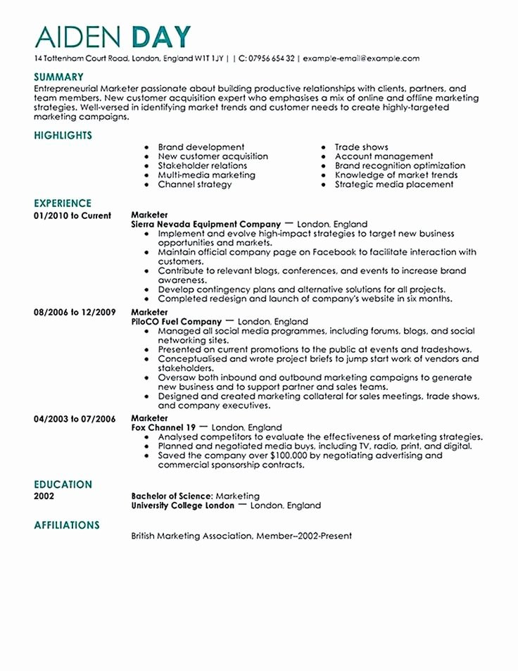 Digital Marketing Resume Marketing Manager Resume Sample