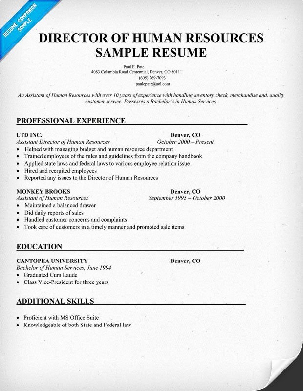 Director Human Resources Sample Resume Resume Panion