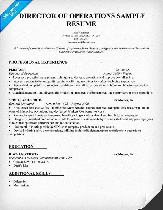 Director Operations Resume Sample Resume Panion
