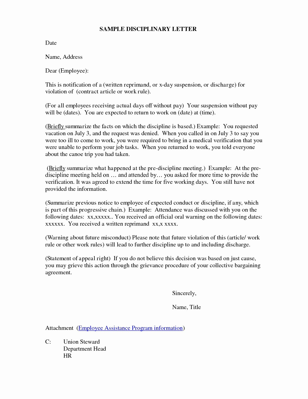 Disciplinary Letter Example