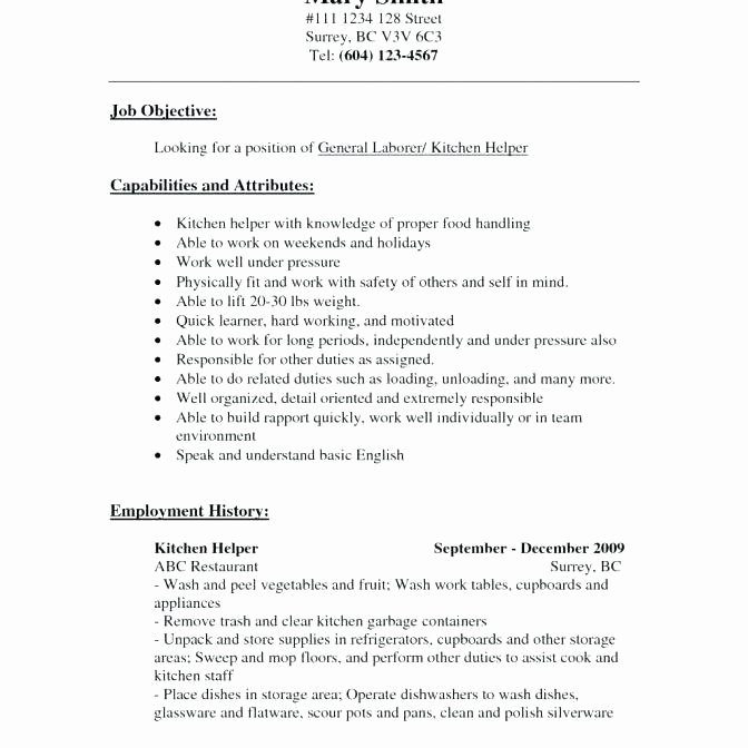 Dishwasher Job Description for Resume Dishwasher Job