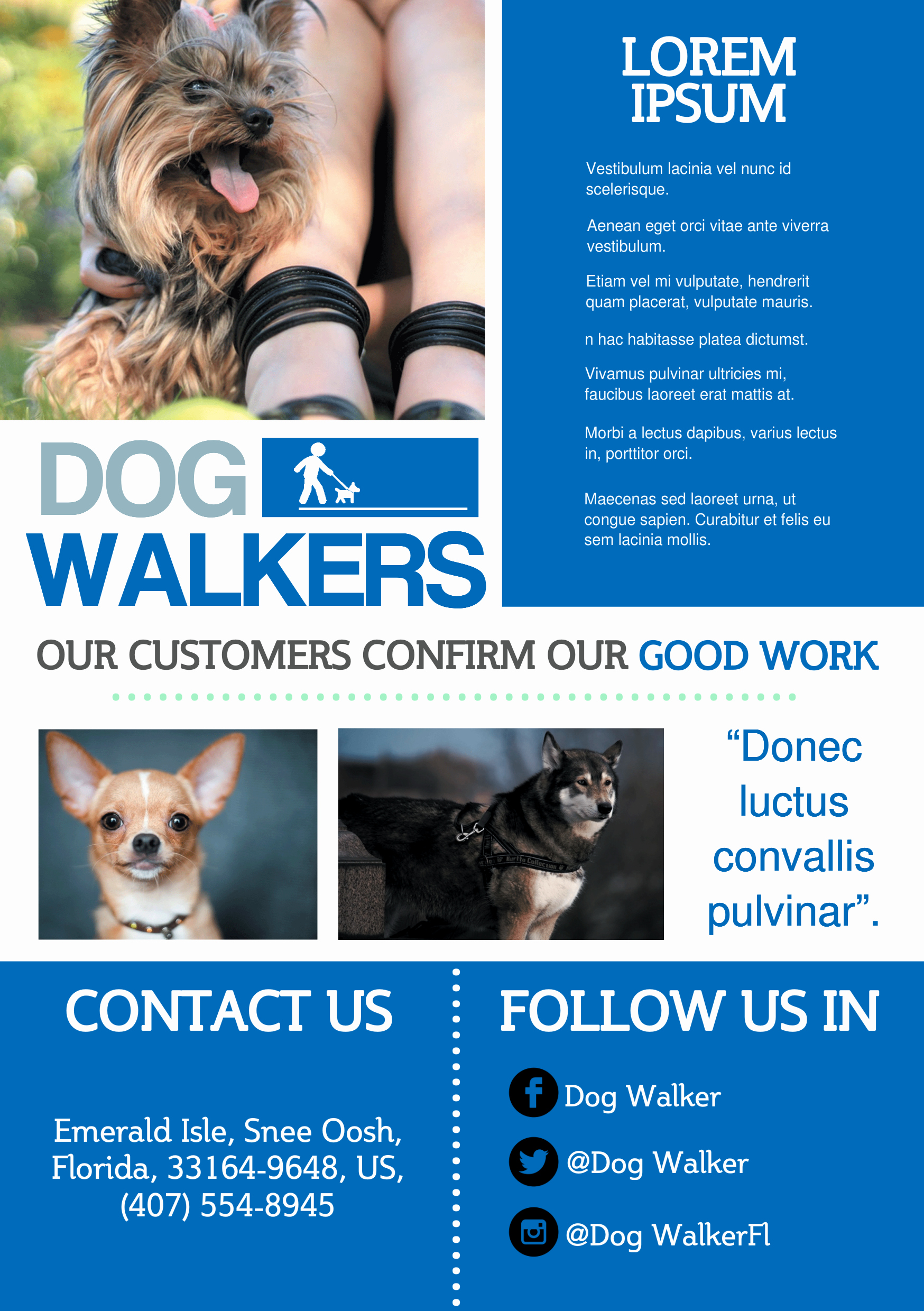 Dog Walker A Promotional Flyer Http Premadevideos Fly
