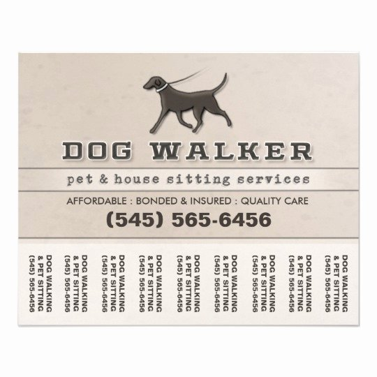 Dog Walker & Pet Sitting Tear F Flyer 5 6 X 4 5