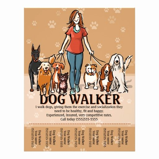 Dog Walker Dog Walking Advertising Template Flyer