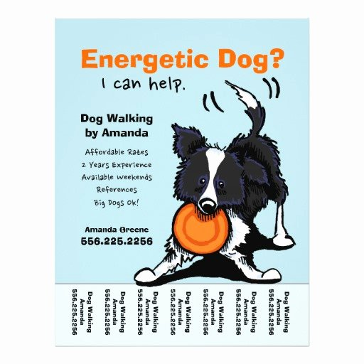 Dog Walker Walking Personalized Tear Sheet Custom Flyer