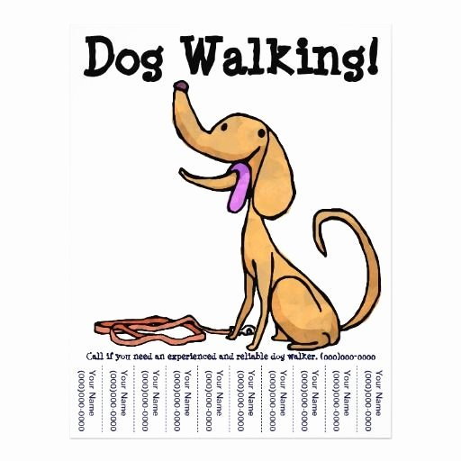 Dog Walking Flyers Google Search