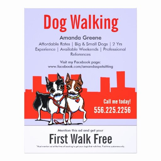 Dog Walking Walker Boston Terriers Coupon Ad Full Color