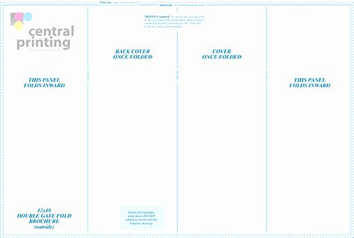 Double Gate Fold Brochure Template 14 Standard Types