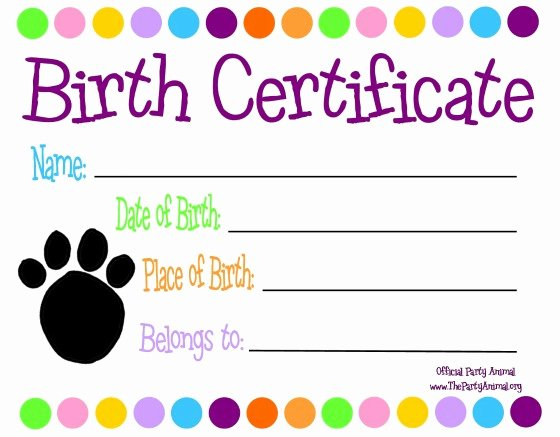 Download Birth Certificate Template Fillable Pdf