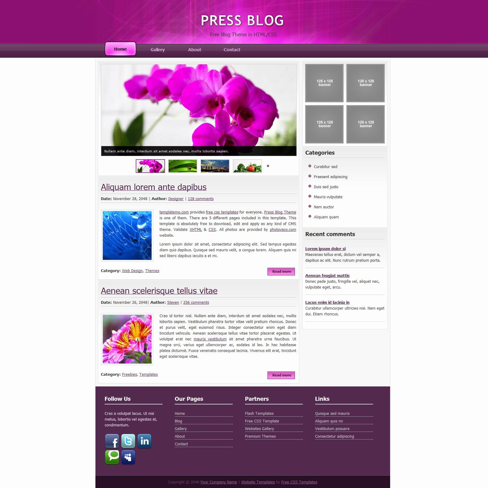 Dreamweaver Website Template Nariy