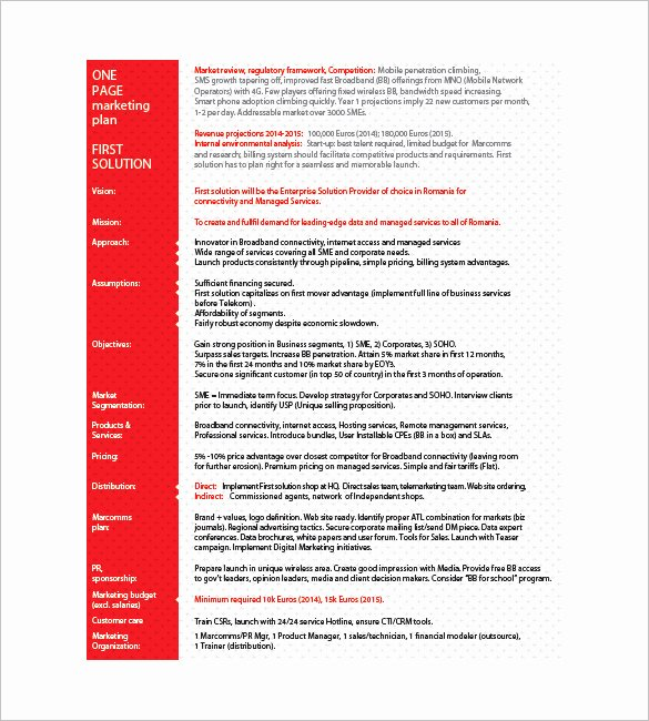 E Page Marketing Plan Template – 16 Free Sample