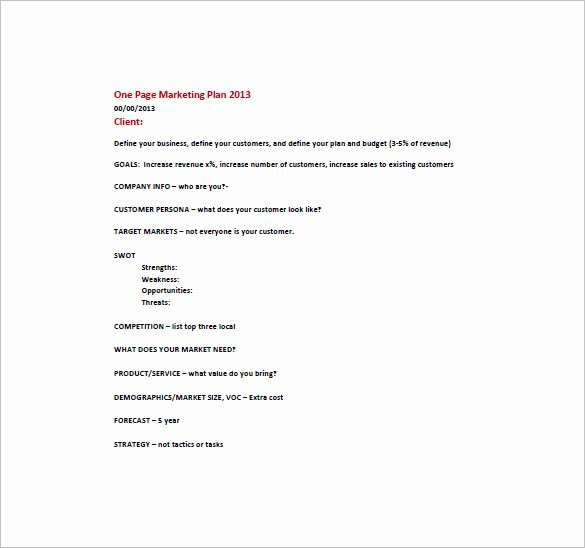 E Page Marketing Plan Template – 16 Free Sample