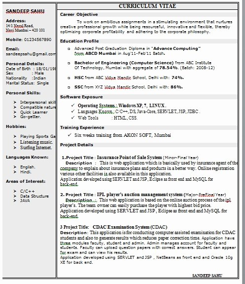 E Page Resume format In Doc