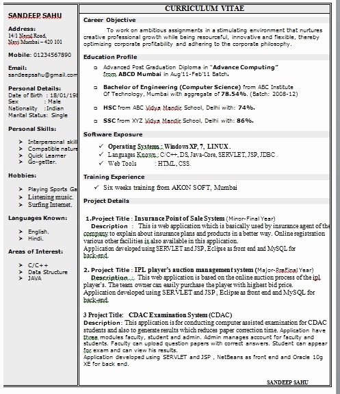 E Page Resume Template Word Best Resume Collection
