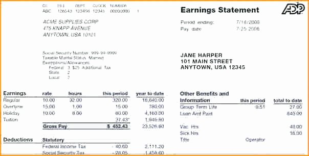 Earnings Statement Template the Leave and Earning Sample