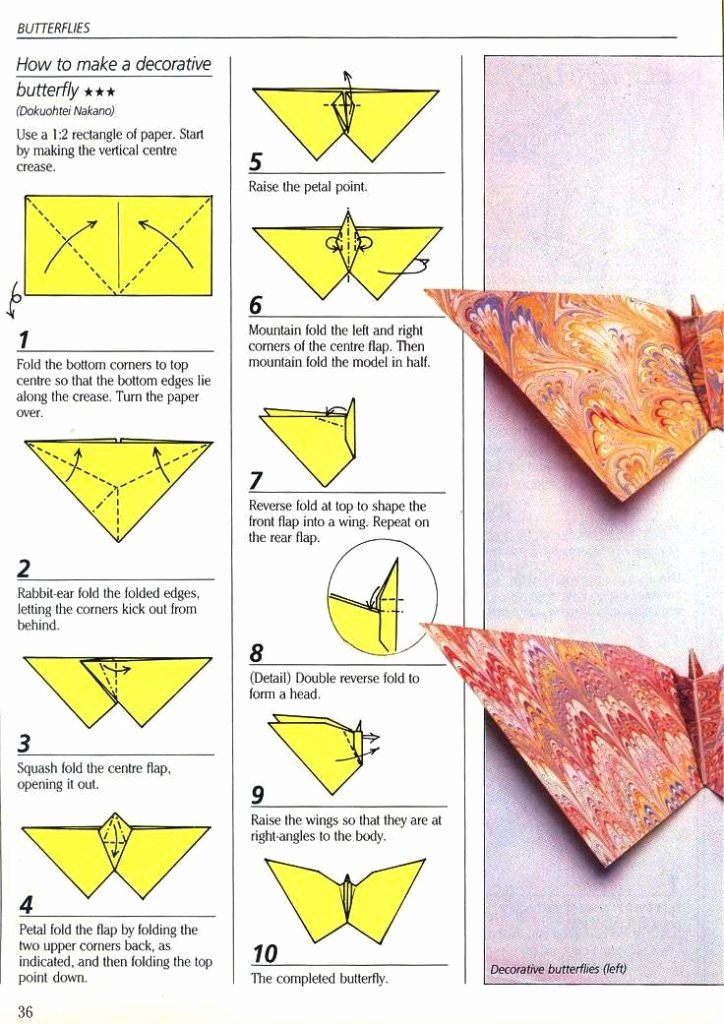 Easy origami butterfly Step by Step Found Herefo