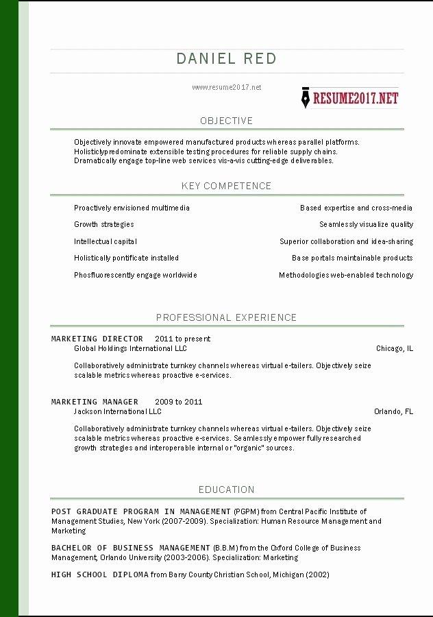Easy Resume Builder Free 2017
