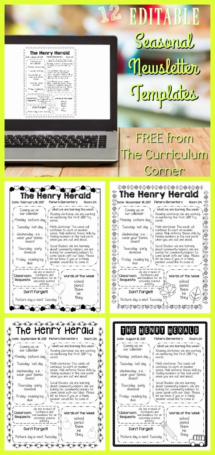 Editable Seasonal Newsletter Templates the Curriculum