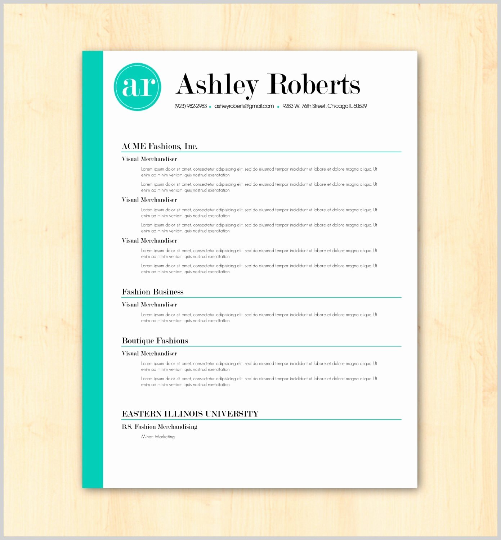 Elegant Modern Resume Template Free Resume Ideas