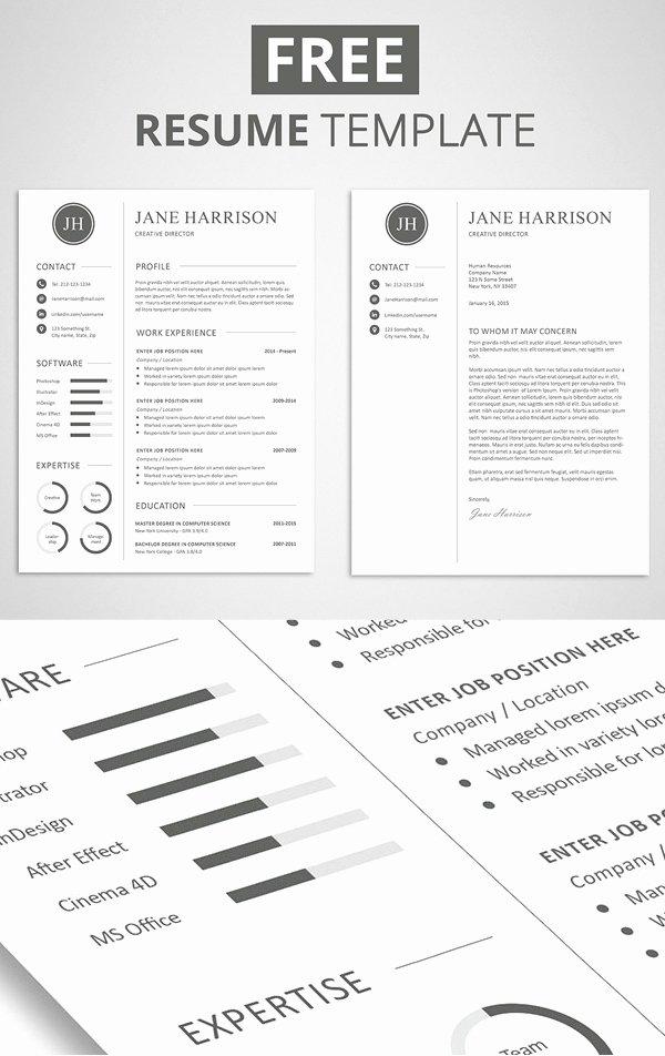 Elegant Resume Templates Free Download Templates