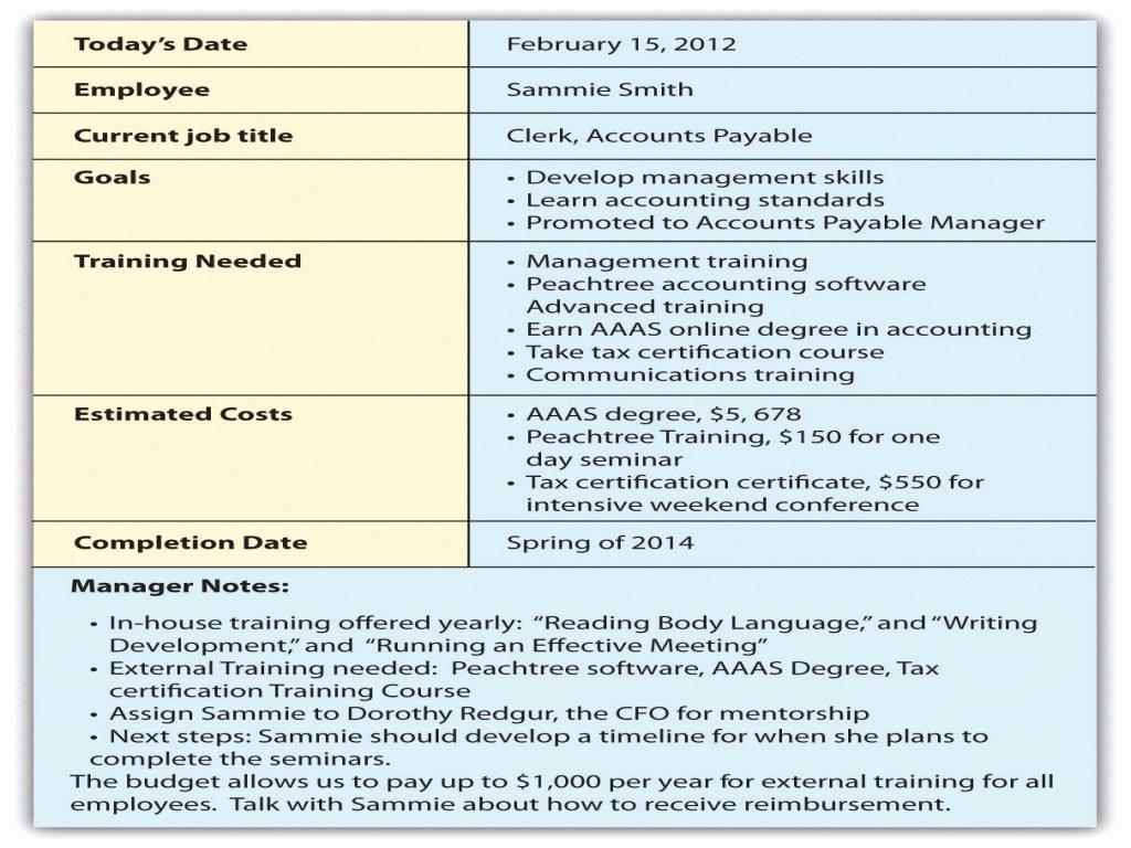 Employee Career Development Plan Template 5 Year Career