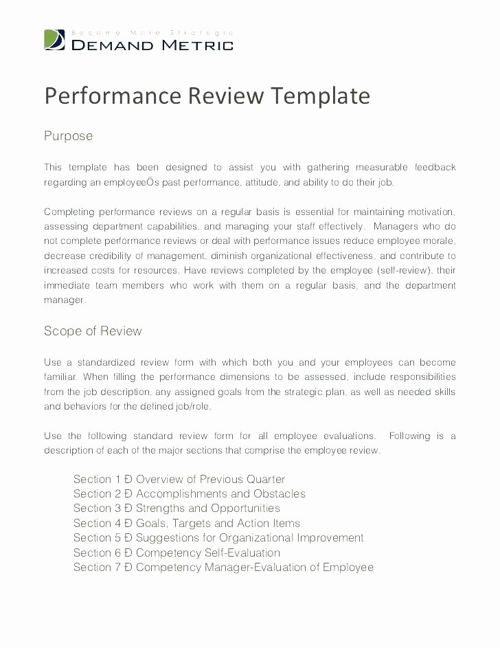 Employee Performance Review Template Word New Examples