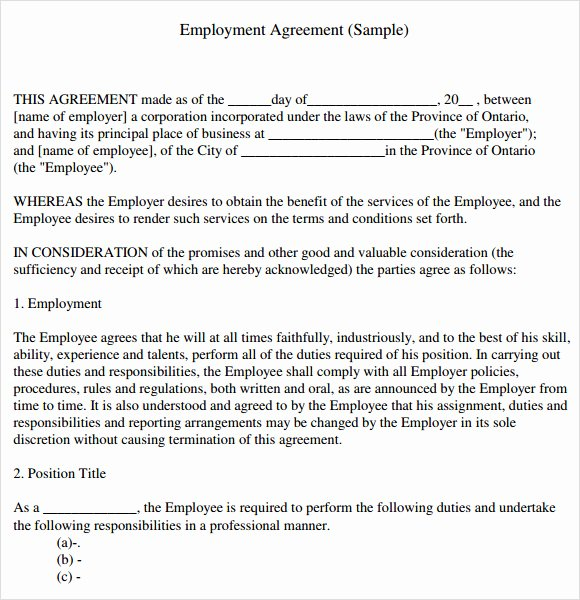 Employment Agreement 8 Free Samples Examples format