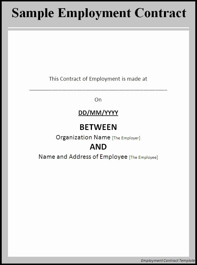 Employment Contract Template Word Excel formats