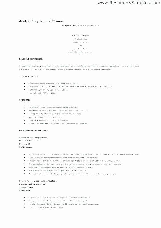 Entry Level Programmer Resume Programmer Resume Template