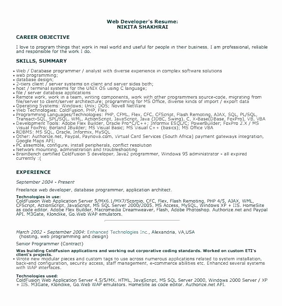 Entry Level Programmer Resume Programmer Resume Template