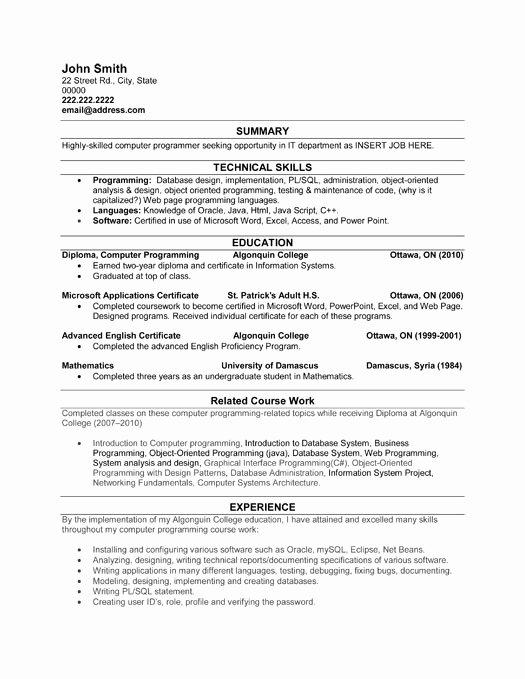 Entry Level Programmer Resume Sample