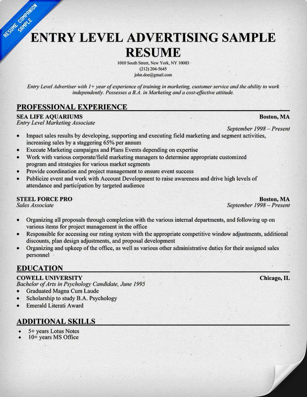 Entry Level Resume Ex Resume Template