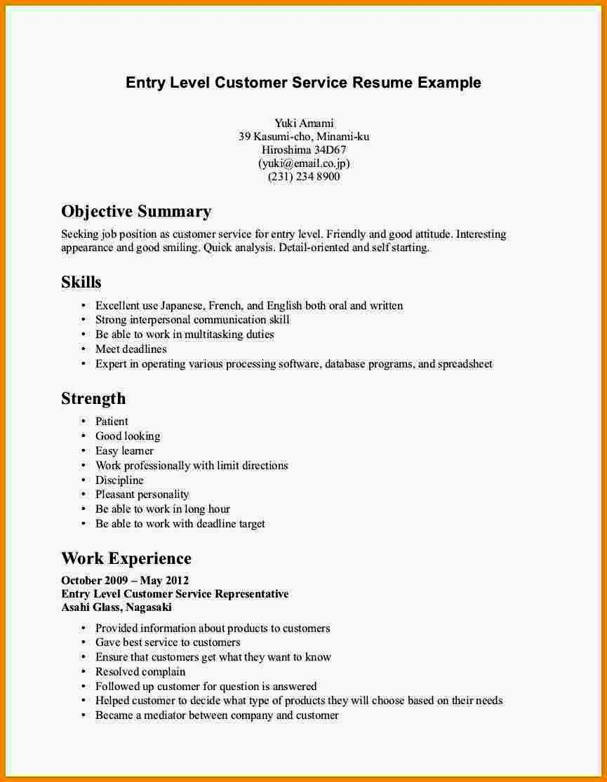 Entry Level Resume Summary Statement
