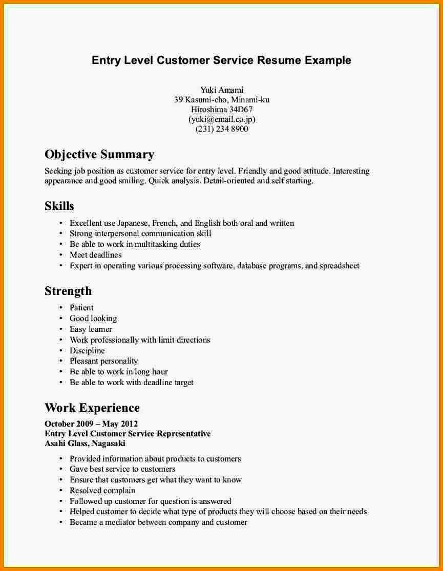 Entry Level Resume Summary Statement