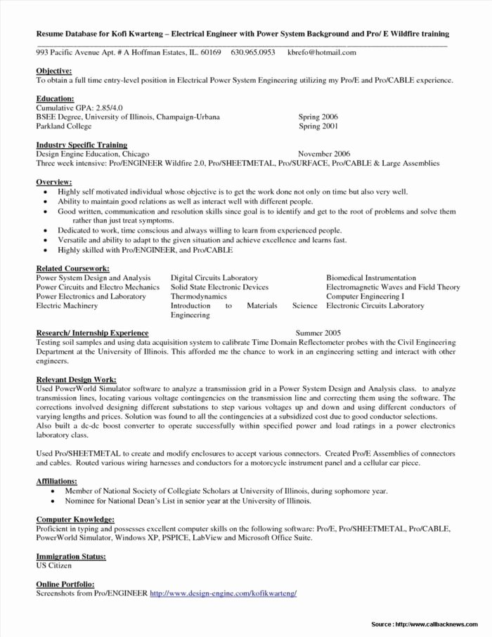 Entry Level Resume Templates Word Templates Resume