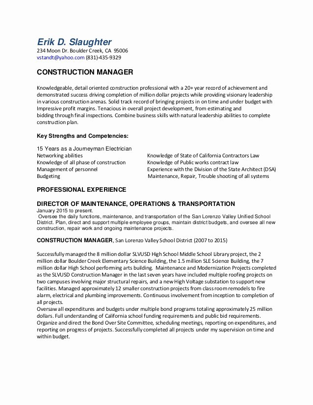 Erik D Resume for Project Manager Position