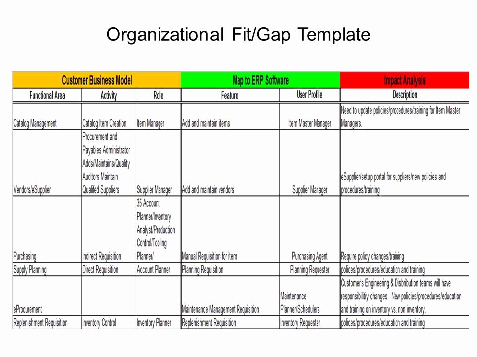 Erp Project 101 organizational Fit Gap