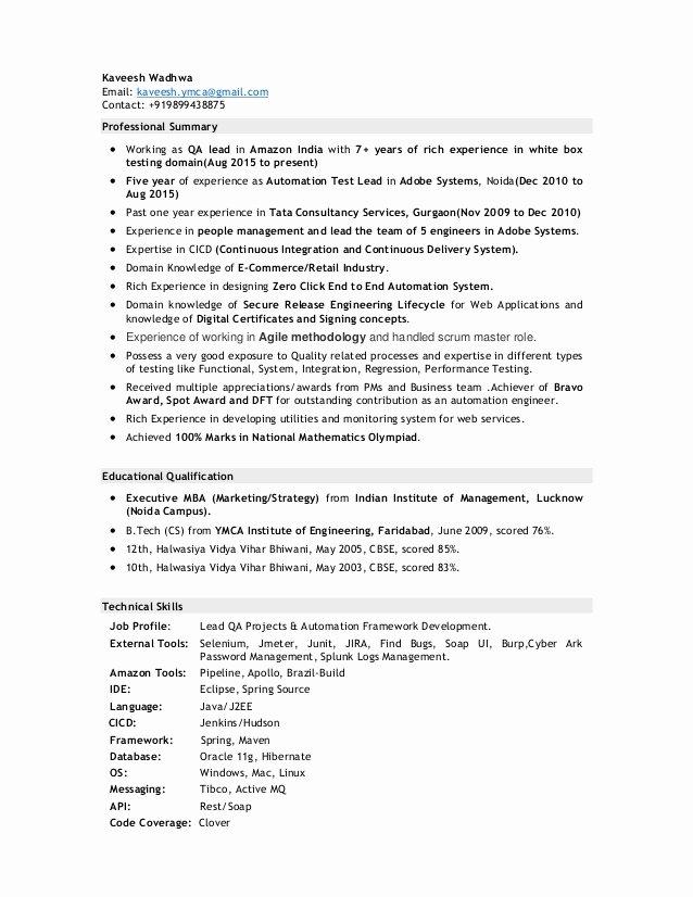 Essay Writing Service Qa Lead Resume Pdf